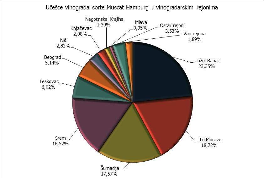 Rejoni - Muscat Hamburg